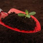 肥料の知識